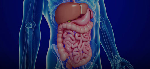 Annals Of Gastroenterology And The Digestive System