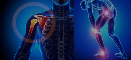 Journal of Orthopedics and Muscular System